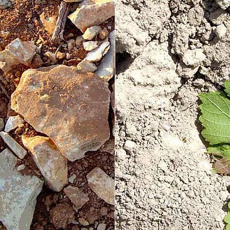 Géologie vignoble en Bandol